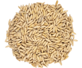 English Oat Malt - Thomas Fawcett & Sons
