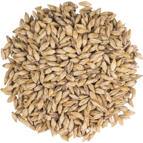 American Carapils Malt - Briess Malting